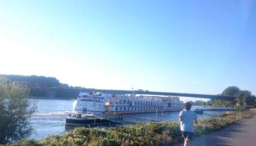 Утро на набережной Рейна